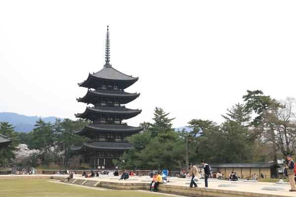 興福寺110126