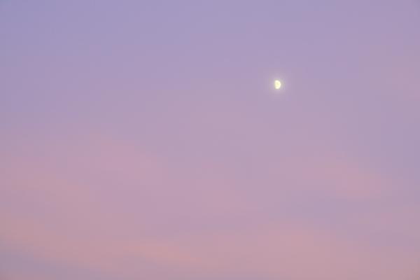 夕焼けの月100723