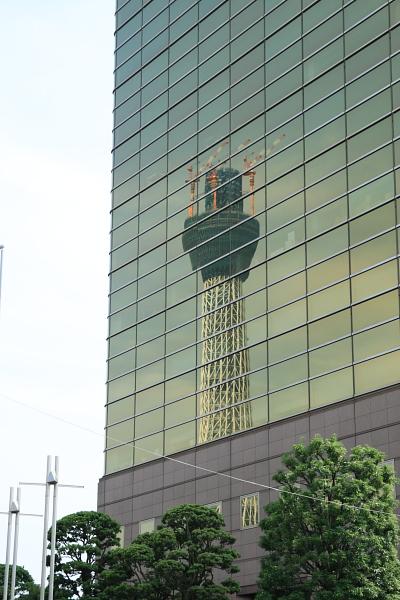ガラスに映るツリー100930