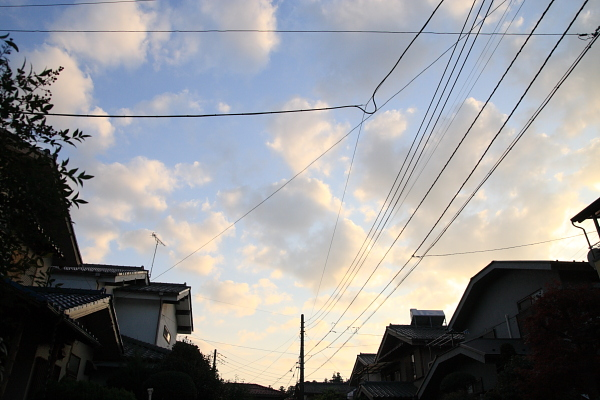 電線の空101203
