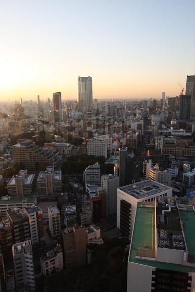 東京タワーからの風景110119