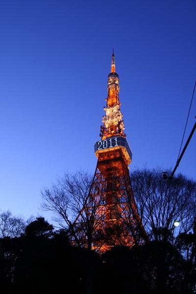 東京タワー110122