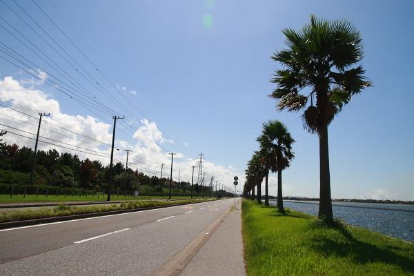 海沿いの道110928