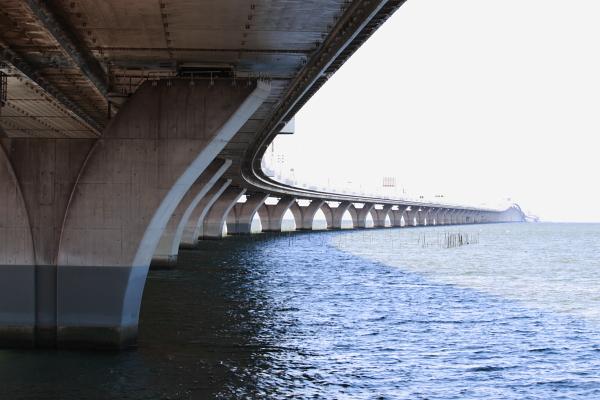 並ぶ橋脚111009