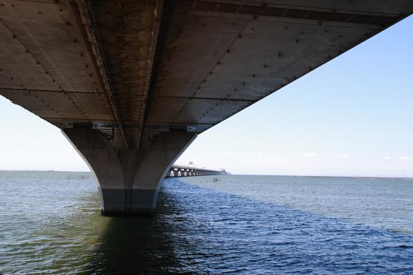 橋の裏111009