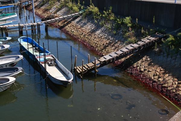 漁船と桟橋111013