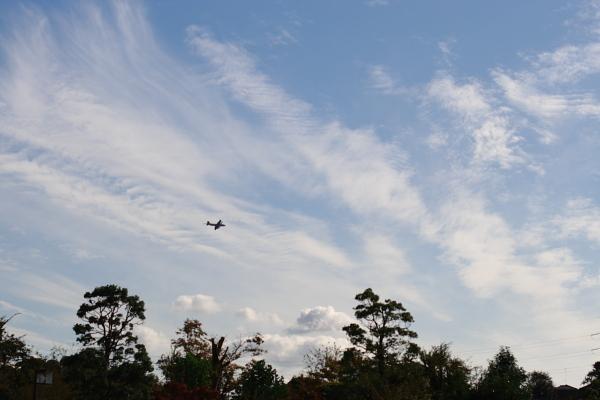 訓練飛行111026