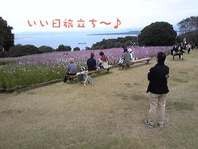 Image982.jpg
