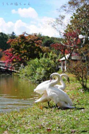 塩沢湖にて1
