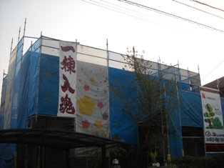DSCN3339.jpg