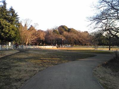 081227砧公園