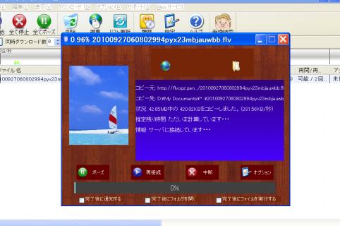 Image11_20101024142701.png