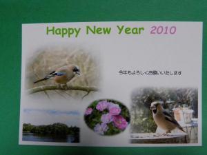 004_convert_20100101003359.jpg