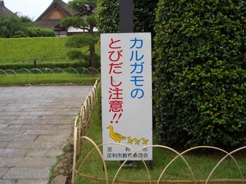 ashikaga_01.jpg