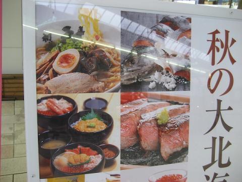 yashiro_edited.jpg