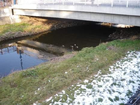 空堀川の冬