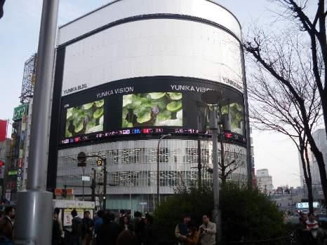 新宿新ビィジョン