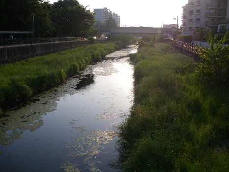 初夏の空堀川