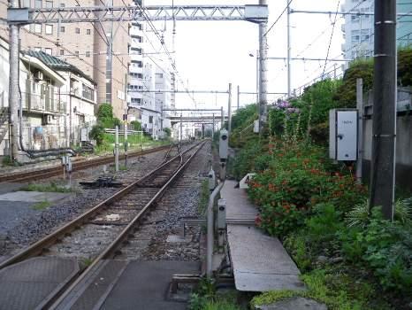 代々木の鉄路