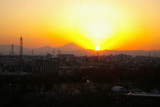 2011年1月9日富士