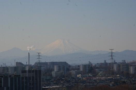 富士1月19