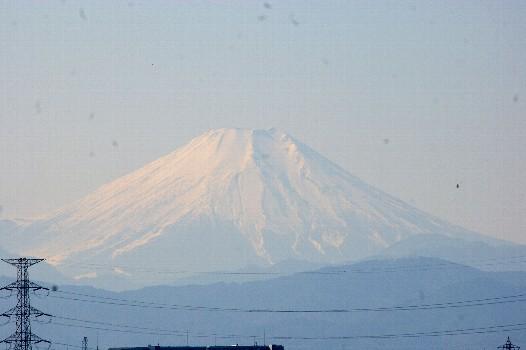 富士1月19アップ