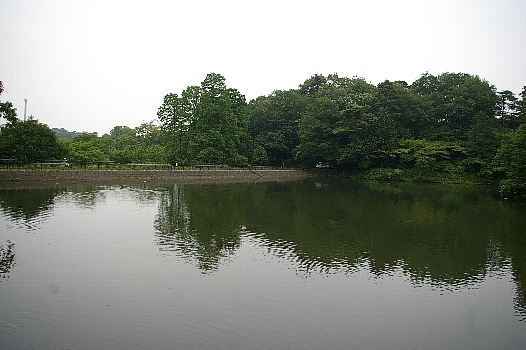 多摩湖の池