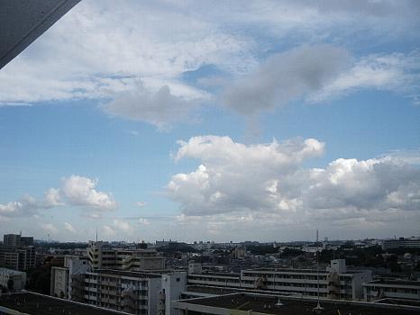 夏空2011-A