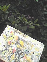 2009.10.14.野の花PA0_0035