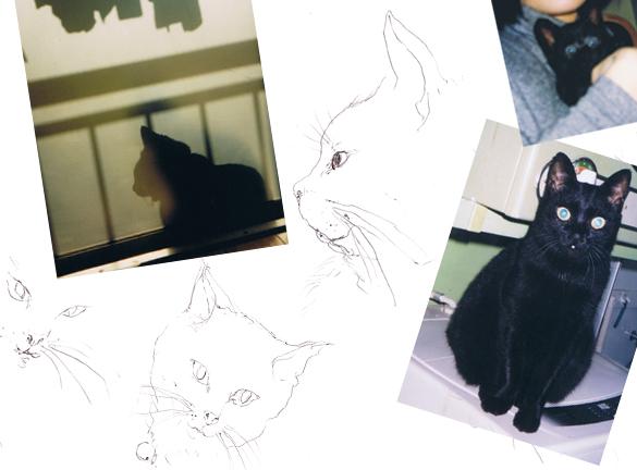 2010.2.28.ブルース 写真とラフ画コラージュ
