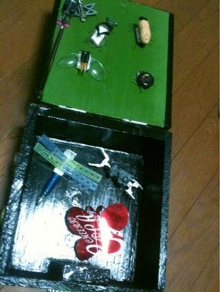 2011.8.エコんちゅうBOX 開いたとこIMG_4399 のコピー