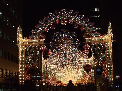 神戸ルミナリエ5