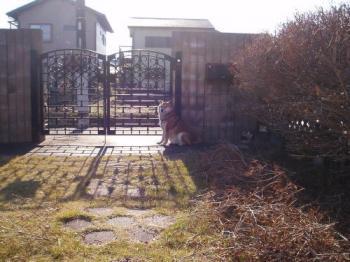2008-12-19-6.jpg
