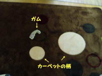 2008-12-28-4.jpg