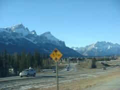 Banff 2010 Feb 2
