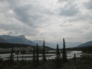 Icefield tour1