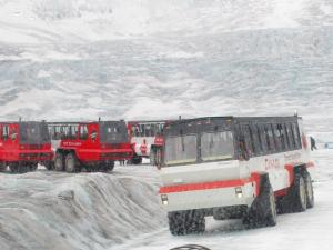 Colombia Icefield3 Aug 2010