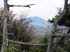 後袈裟丸山の山頂から男体山