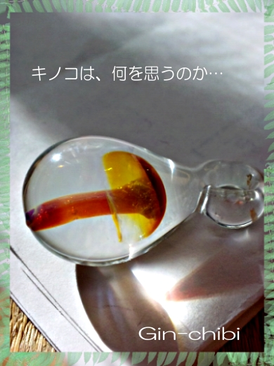SBSH0621.jpg
