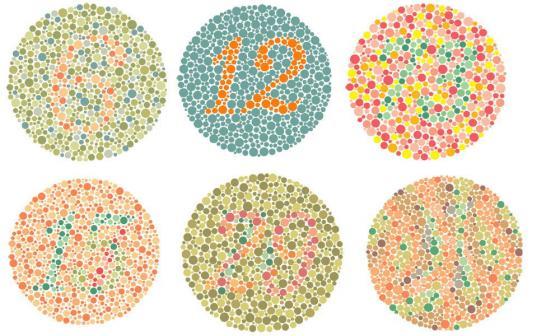 Color Universal Design Organization