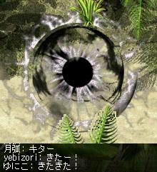 20100514_02.jpg