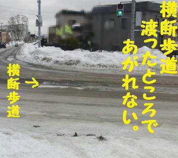 CIMG9617.jpg