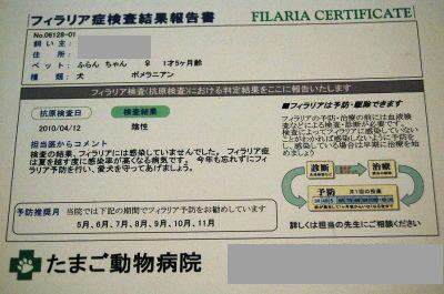 ふらんフィラリア症検査結果