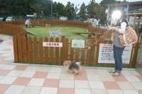 伊豆高原旅の駅ドッグラン