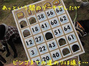 10-10 c 085-1