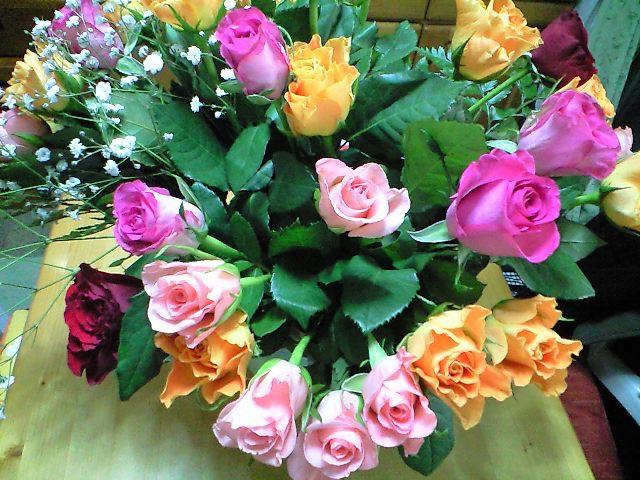 roses_4_momo.jpg