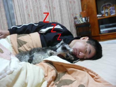 ダイアン コタツで寝る1