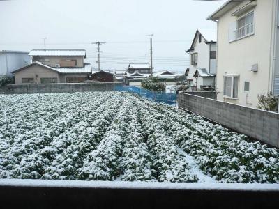 大雪1-s