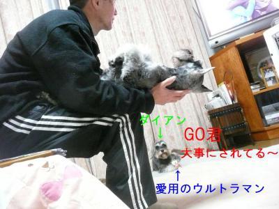 GO君とお父さん2-s