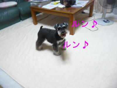 ママ遊ぼう5-s